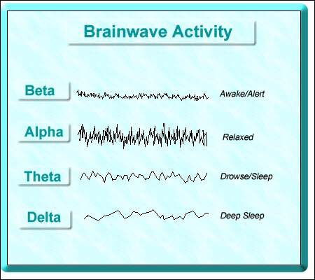 Beta Alpha Delta Gamma Brainwaves